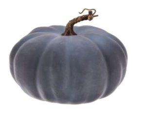 Gray Pumpkin
