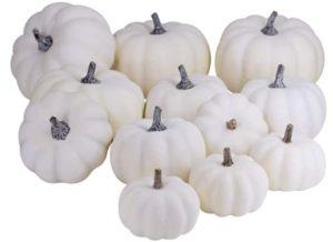 White Artificial Pumpkins 12 Pieces